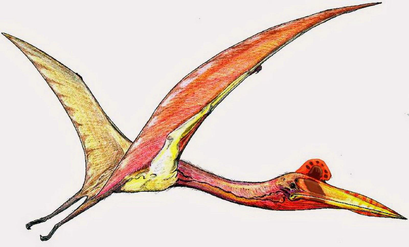 7 Spesies Dinosaurus Terunik dan Teraneh di Dunia