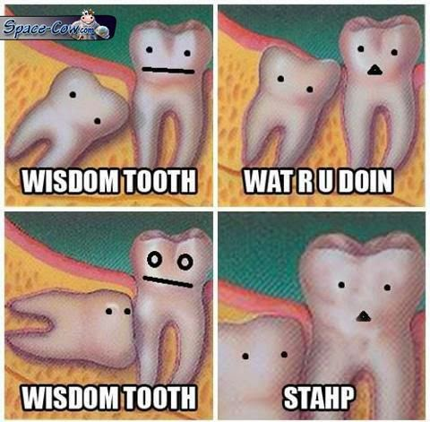 funny wisdom tooth picture