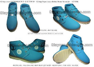 Giày nam đẹp GT239. 65