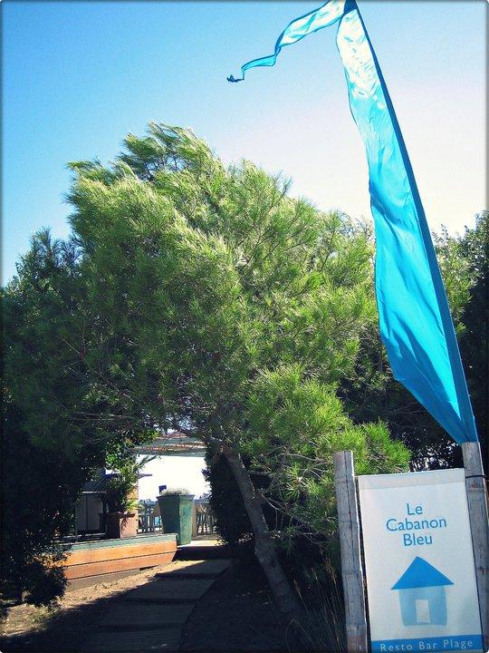 Aller Cabanon Bleu Corse