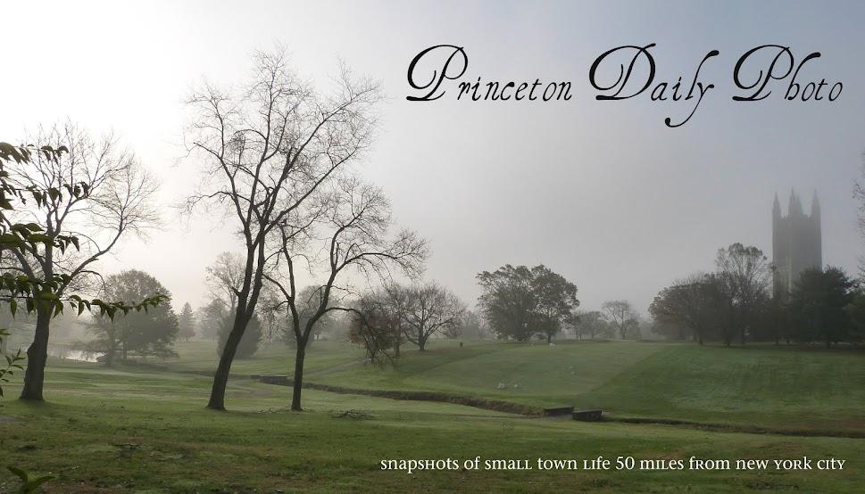 PRINCETON DAILY PHOTO