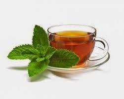 Combate el vómito con té de menta