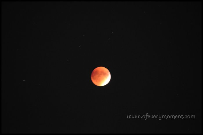 I'm very happy with the photo I took of the super moon during the September 27th eclipse