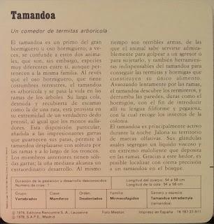 Fichas Safari Club, características de el Tamandoa