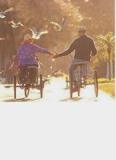 cinta sampai tua