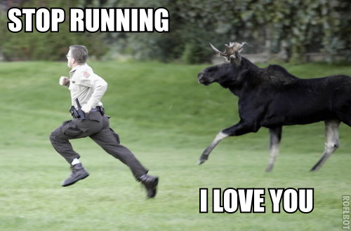 Stop Running - I Love You