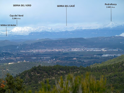 La Serra del Verd, el Cadí i el Pedraforca des de la Serra de Vallhonesta