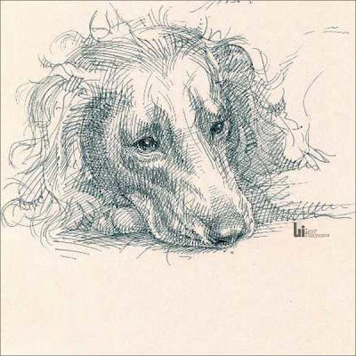 dog drawing by Igor Lukyanov (cross-hatching)