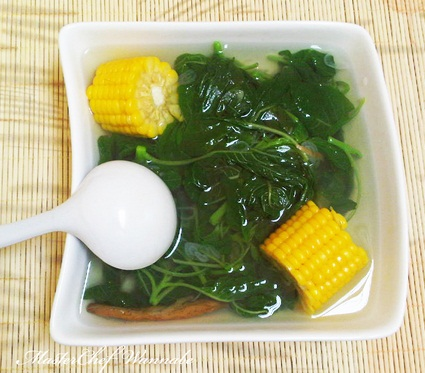Demikianlah artikel manfaat sayur bayam bagi kesehatan tubuh