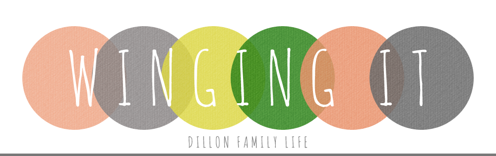 winging it: dillon family life