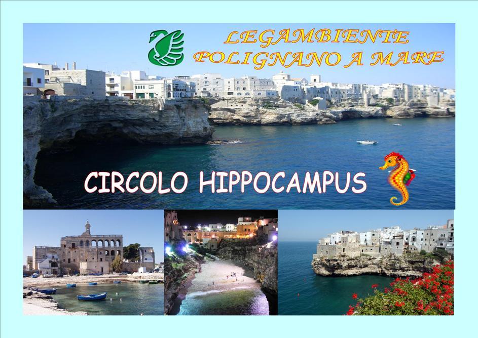 Legambiente Hippocampus Polignano a Mare