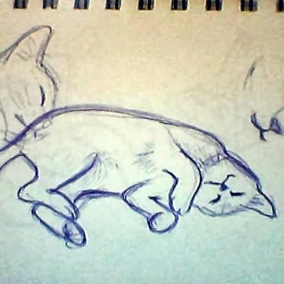 Skizze Katze