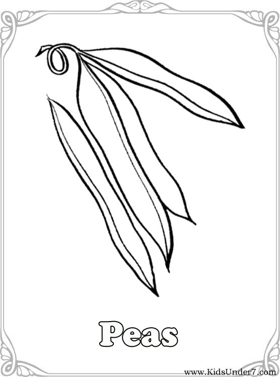 vegetable coloring pages - Coloring Pages Leafy Vegetables