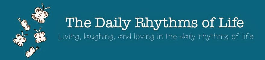 The Daily Rhythms of Life