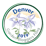 I'm Flinging in Denver, CO, June 13-16, 2019!