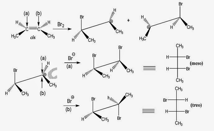 Cơ chế cộng halogen vào liên kết bội