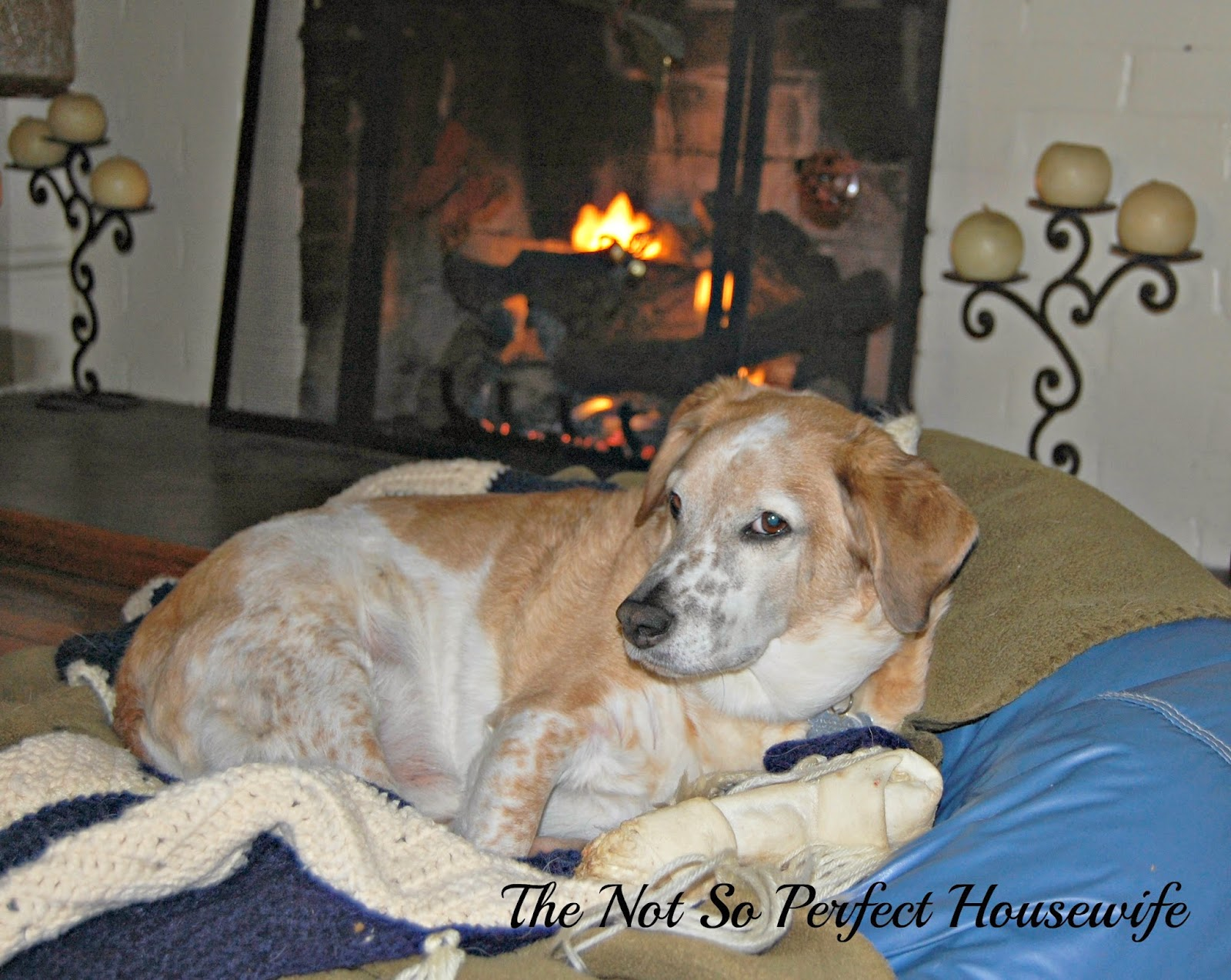 Five on Friday - The Not So Perfect Housewife