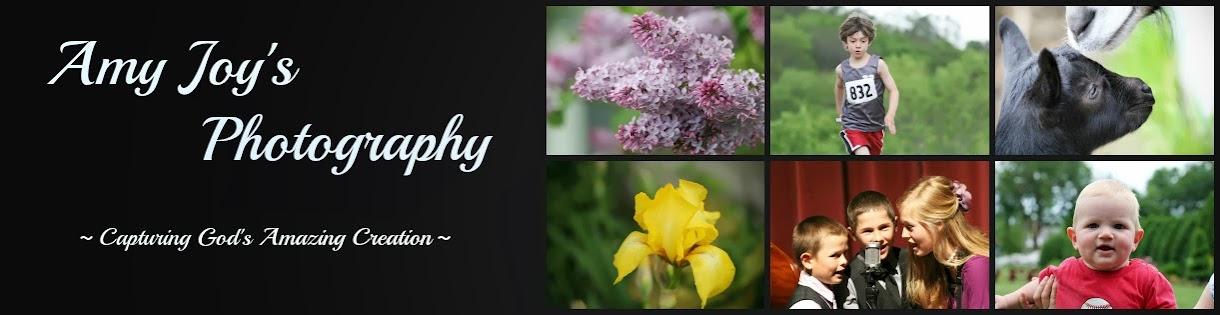 Amy Joy's Photography
