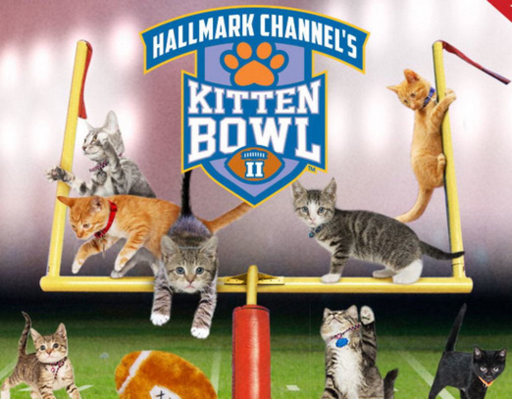 http://www.hallmarkchannel.com/kitten-bowl