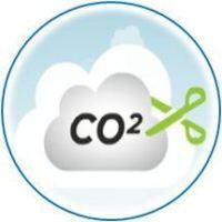 riduzione di CO2 con impianti di cogenerazione a biomassa vegetale ed animale