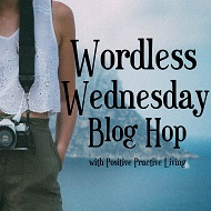 Amanda's Wordless Wednesday