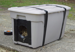 How You Can Help Feral & Outdoor Cats Stay Warm In Winter
