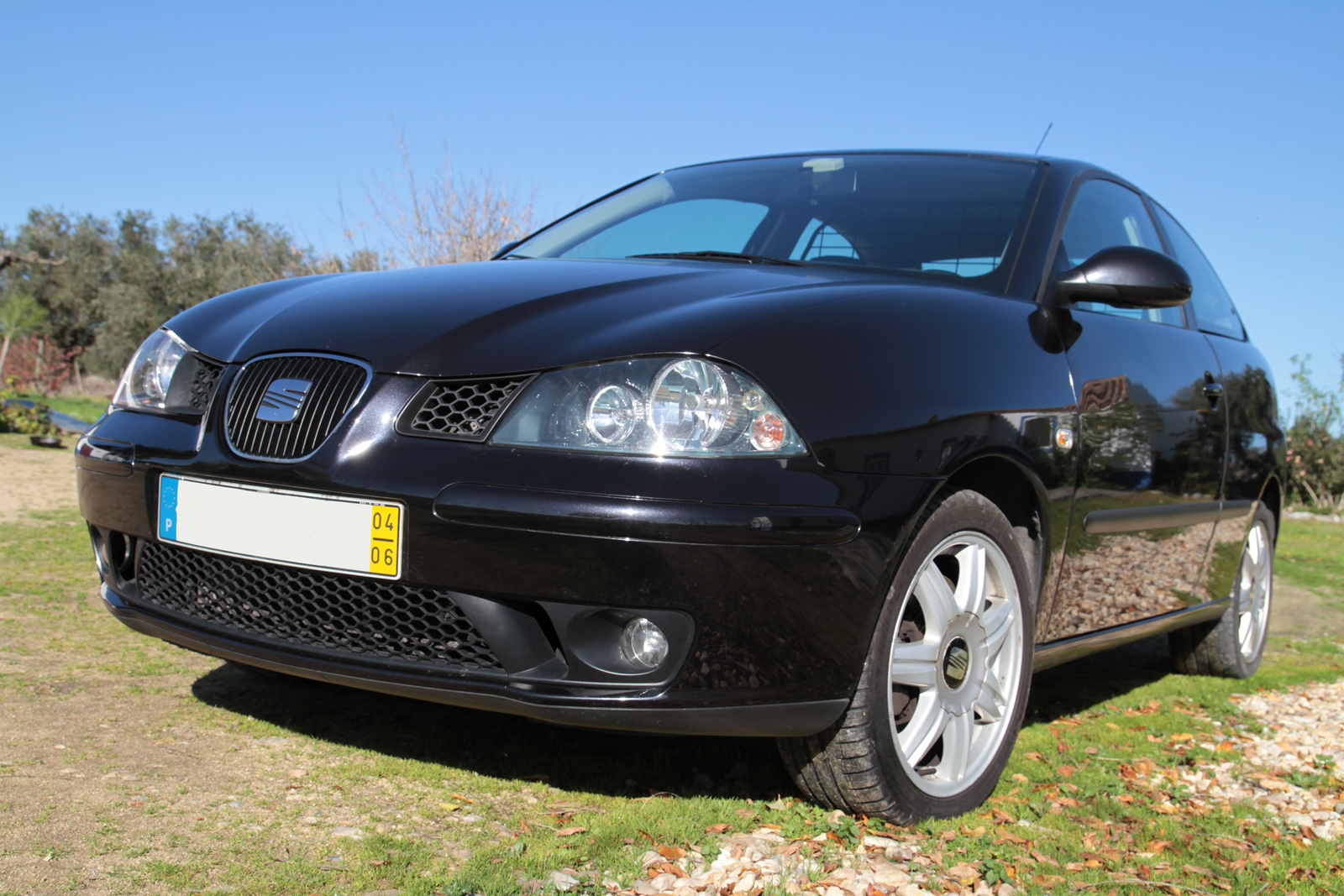 portuguese petrol head driven seat ibiza sport 130 2004. Black Bedroom Furniture Sets. Home Design Ideas