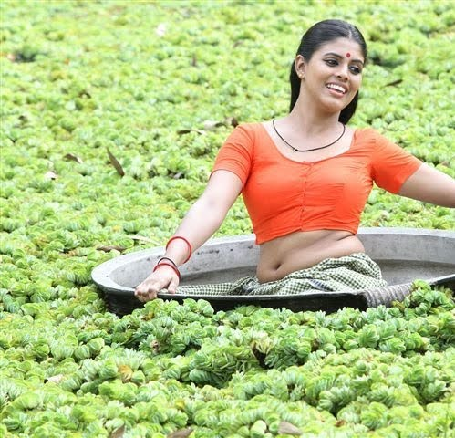 mallu actress Iniya hot navel