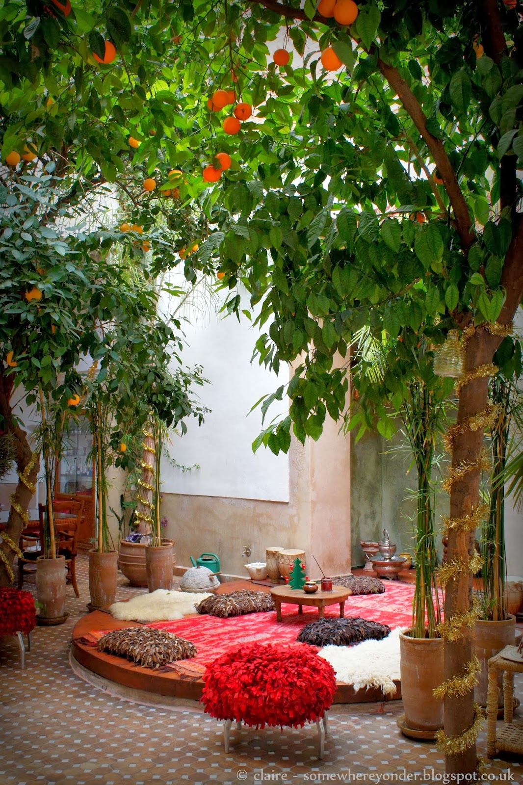 Inner courtyard at Riad Rafaele - complete with orange trees and spots to think and read
