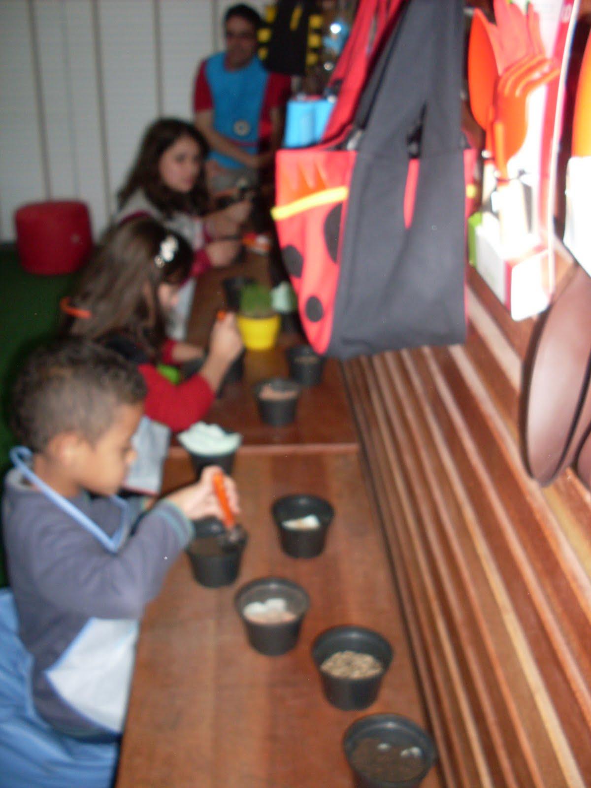 girassol anao de jardim:Nesta foto o paisagista ensina as crianças a plantarem ALPISTE