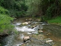 La Gavarresa al seu pas a prop d'El Prat d'Oriols