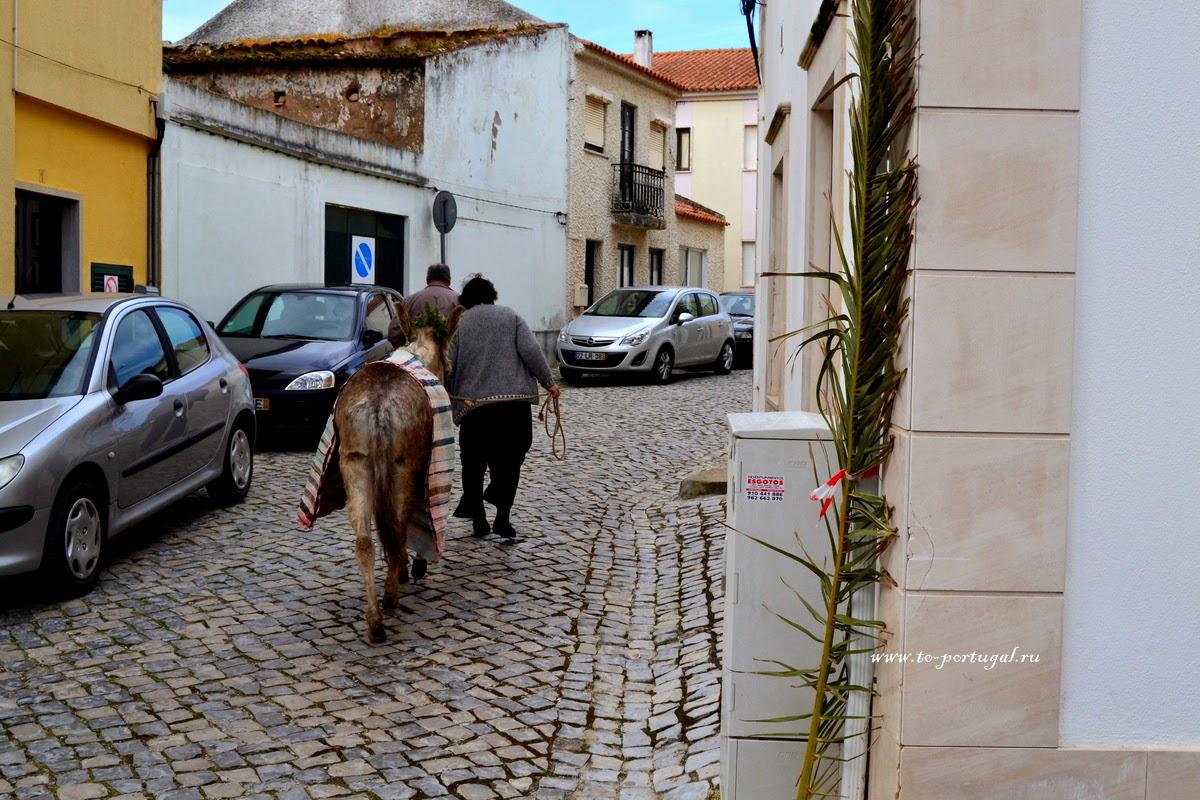 привычки португальцев