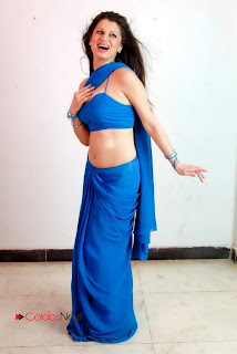 Menaka Spicy PictureShoot Gallery in Blue Saree ~ Celebs Next