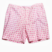 Pigs Fly Shorts