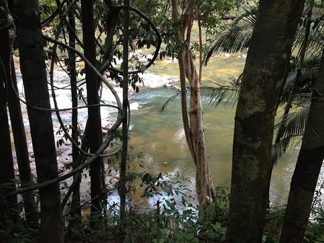 sungai taman negeri endau rompin