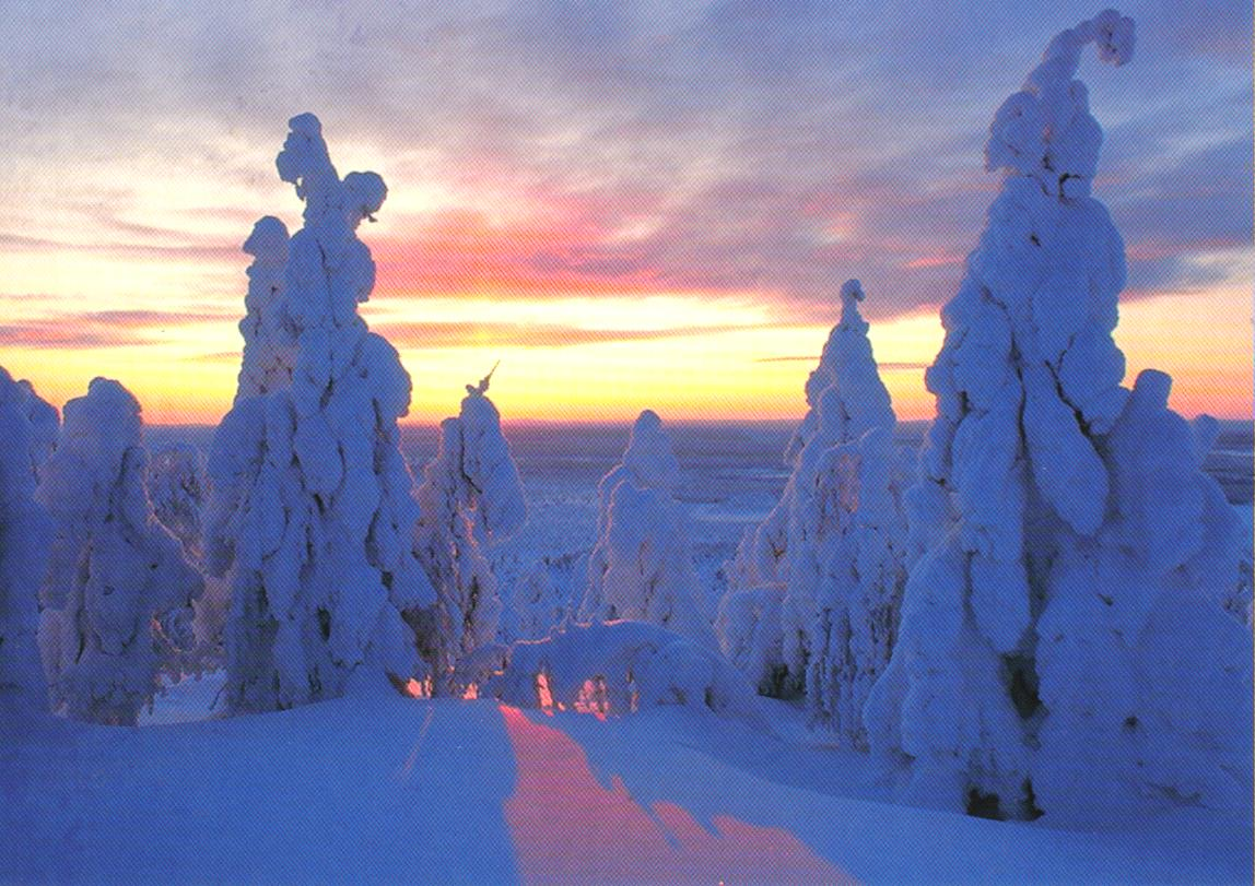 Visit Finland - Snowboarding And Freestyling