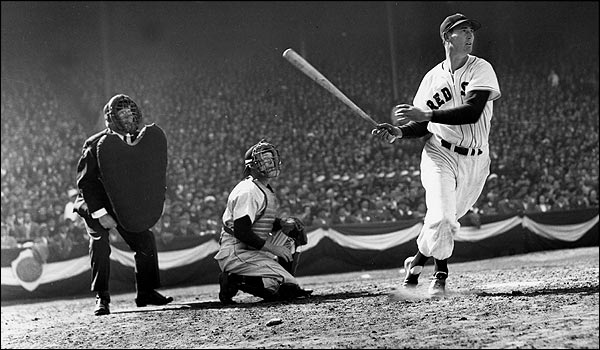 ted williams essay