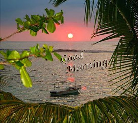 early nice morning to all of u