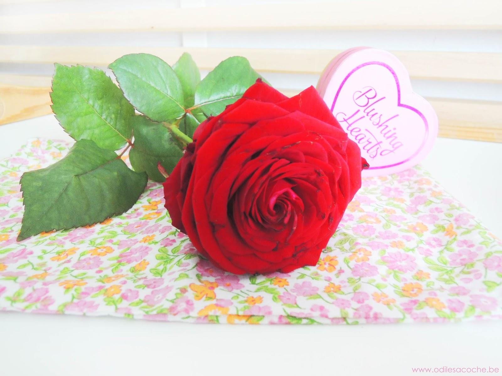 rose saint valentin zalando