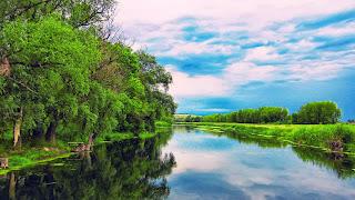 Hermoso río de verano