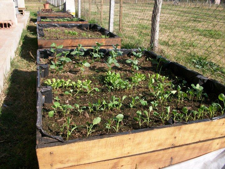 Nl arte en madera canteros para jard n macetas for Canteros de jardin