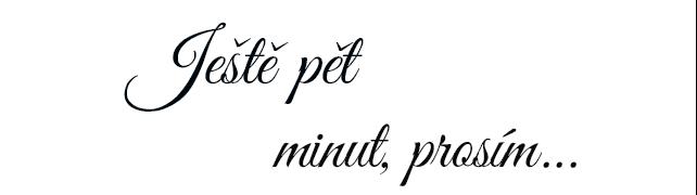 Ještě pět minut, prosím
