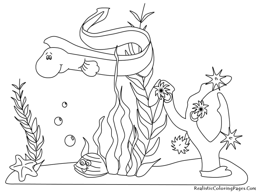 ocean animals plants coloring pages - photo#9