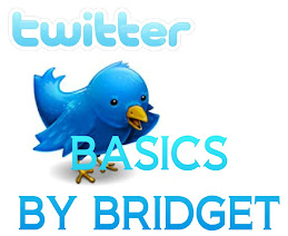 Twitter Basics By Bridget