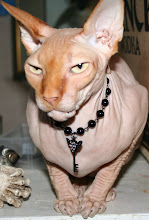 Naked Diva Pet Jewelry