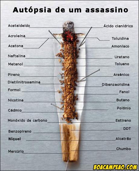 O caminho fácil deixará de fumar epub