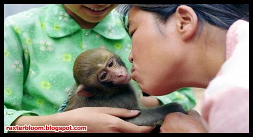 Wanita yang Menyusui Monyet Peliharaannya - raxterbloom.blogspot.com