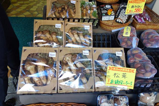 Tsukiji Fish market tokyo matsutake pine mushroom