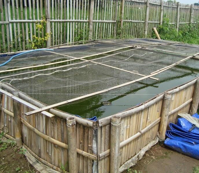 indonesia tourism cara membuat kolam terpal