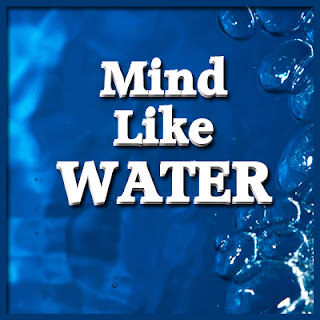 Mind Like Water - Management Like Water
